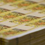 Por que o Brasil simplesmente não imprime dinheiro para sair da crise?