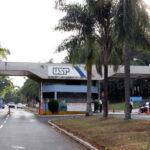 Brasileiros desvendam fator por trás do contágio de nova cepa do Sars-Cov-2