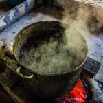 Chá de ayahuasca estimula formação de novos neurônios