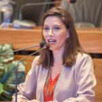 Procuradoria Especial da Mulher da CLDF divulga edital para o Selo Empresa Amiga da Primeira Infância