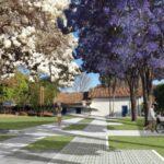 Planaltina: Audiência Pública online hoje sobre o projeto do percurso turístico e cultural da cidade