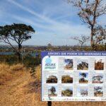 DF vai ganhar sistema de trilhas ecológicas chamado de 'Caminhos do Planalto Central'