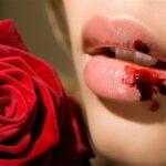 Imagine se as 'Rosas' falassem, o quê re 'weber' aria