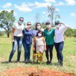 Voluntariado da CLDF completa um ano de ações sociais e de reflorestamento